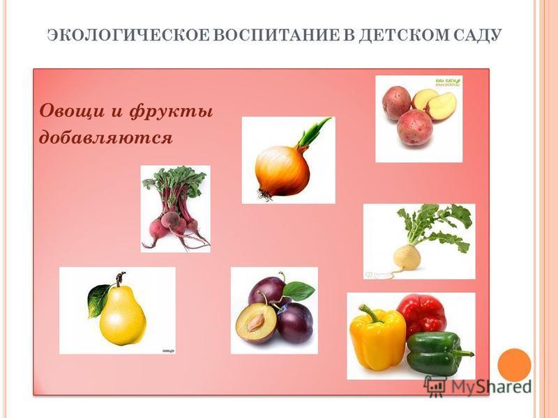 ЭКОЛОГИЧЕСКОЕ ВОСПИТАНИЕ В ДЕТСКОМ САДУ Овощи и фрукты добавляются Овощи и фрукты добавляются