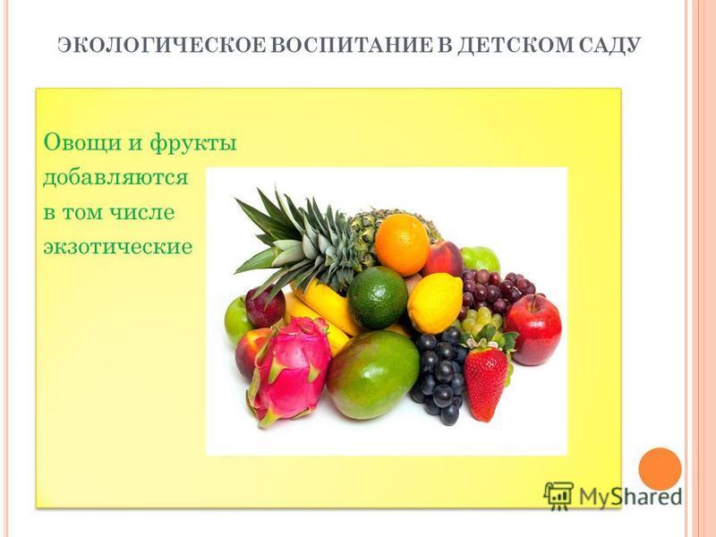 ЭКОЛОГИЧЕСКОЕ ВОСПИТАНИЕ В ДЕТСКОМ САДУ Овощи и фрукты добавляются в том числе экзотические Овощи и фрукты добавляются в том числе экзотические