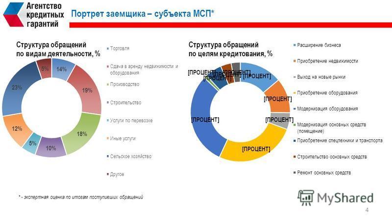 Портрет заемщика – субъекта МСП* * - экспертная оценка по итогам поступивших обращений 4