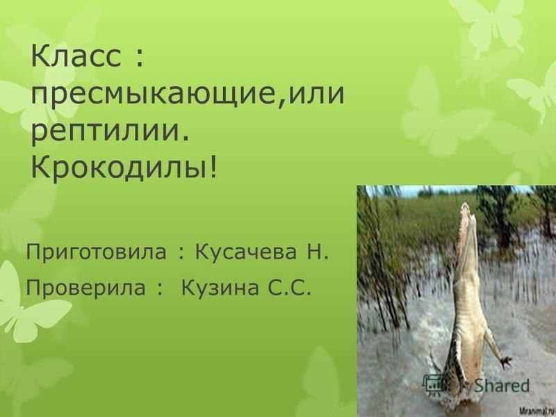 Класс : пресмыкающие,или рептилии. Крокодилы! Приготовила : Кусачева Н. Проверила : Кузина С.С.