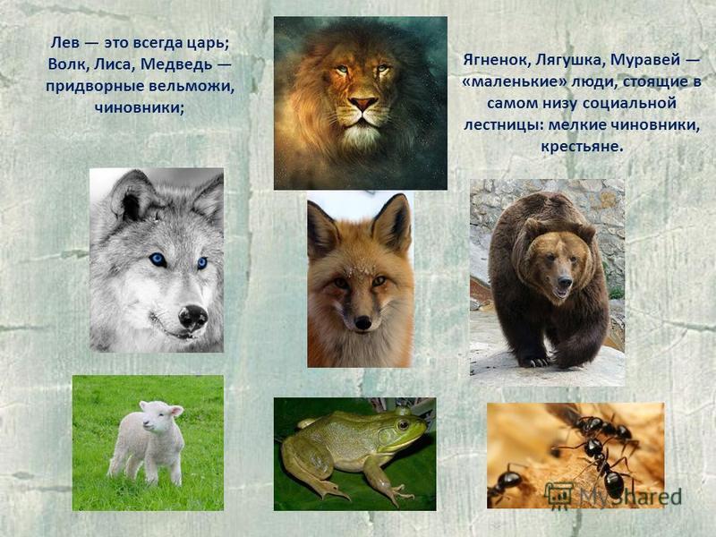 Ягненок, Лягушка, Муравей «маленькие» люди, стоящие в самом низу социальной лестницы: мелкие чиновники, крестьяне. Лев это всегда царь; Волк, Лиса, Медведь придворные вельможи, чиновники;