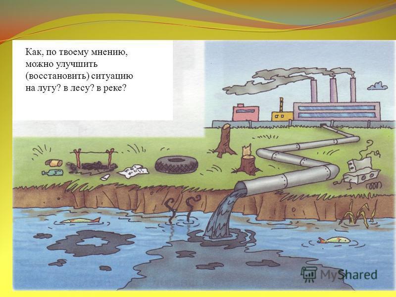 Как, по твоему мнению, можно улучшить (восстановить) ситуацию на лугу? в лесу? в реке?