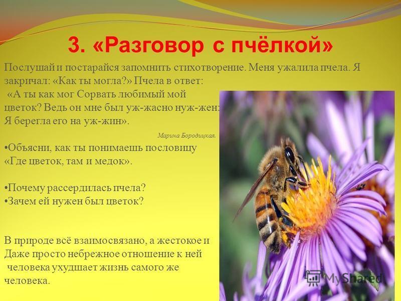 3. «Разговор с пчёлкой» Послушай и постарайся запомнить стихотворение. Меня ужалила пчела. Я закричал: «Как ты могла?» Пчела в ответ: «А ты как мог Сорвать любимый мой цветок? Ведь он мне был уж-жасно нуж-жен: Я берегла его на уж-жин». Марина Бородиц