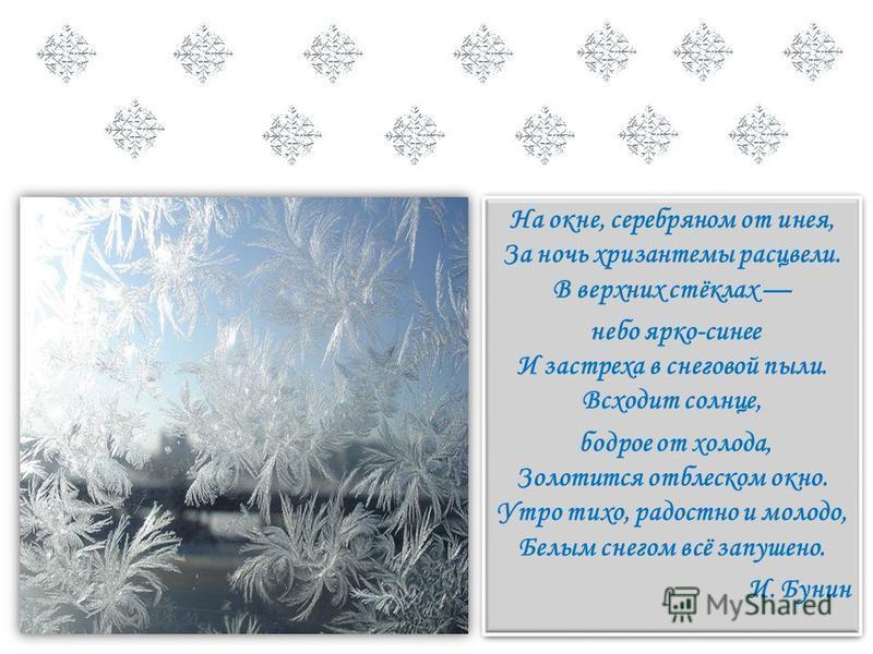 На окне, серебряном от инея, За ночь хризантемы расцвели. В верхних стёклах небо ярко-синее И застреха в снеговой пыли. Всходит солнце, бодрое от холода, Золотится отблеском окно. Утро тихо, радостно и молодо, Белым снегом всё запушено. И. Бунин На о