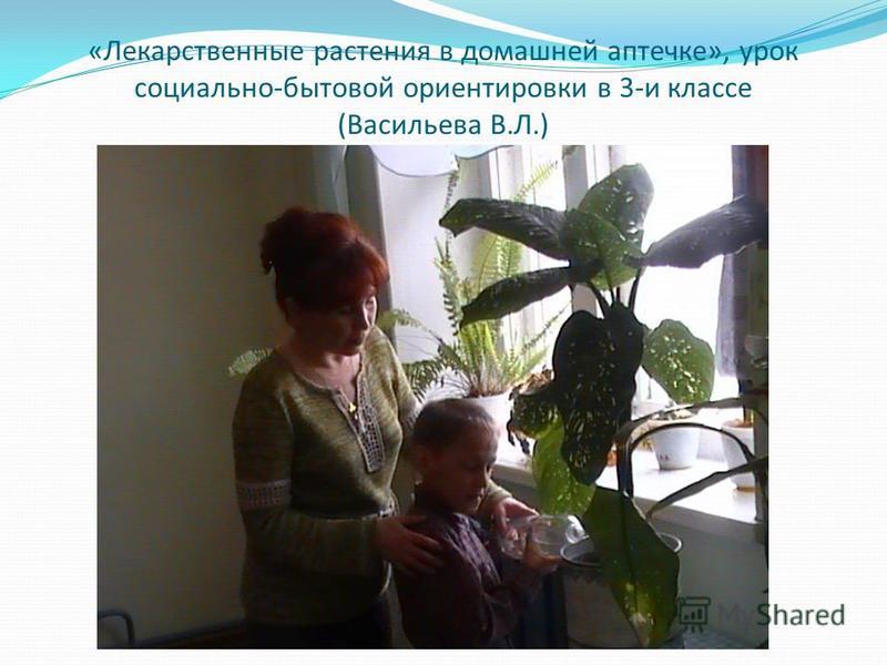 «Лекарственные растения в домашней аптечке», урок социально-бытовой ориентировки в 3-и классе (Васильева В.Л.)