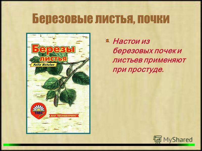 Березовые листья, почки Настои из березовых почек и листьев применяют при простуде.