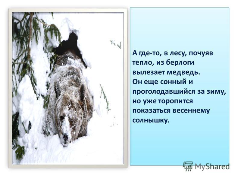 А где-то, в лесу, почуяв тепло, из берлоги вылезает медведь. Он еще сонный и проголодавшийся за зиму, но уже торопится показаться весеннему солнышку.