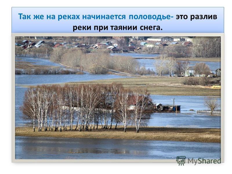 Так же на реках начинается половодье- это разлив реки при таянии снега.