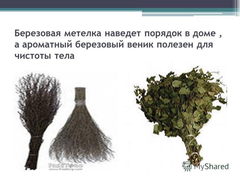 Березовая метелка наведет порядок в доме, а ароматный березовый веник полезен для чистоты тела