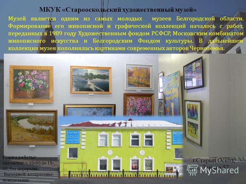 Музей является одним из самых молодых музеев Белгородской области. Формирование его живописной и графической коллекций началось с работ, переданных в 1989 году Художественным фондом РСФСР, Московским комбинатом живописного искусства и Белгородским Фо