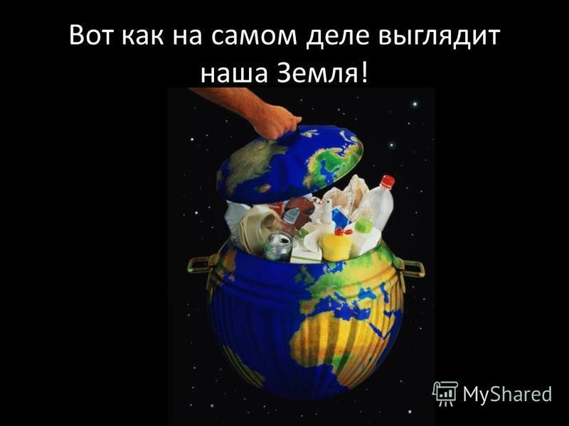 Вот как на самом деле выглядит наша Земля!
