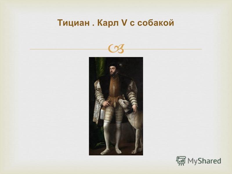 Тициан. Карл V с собакой