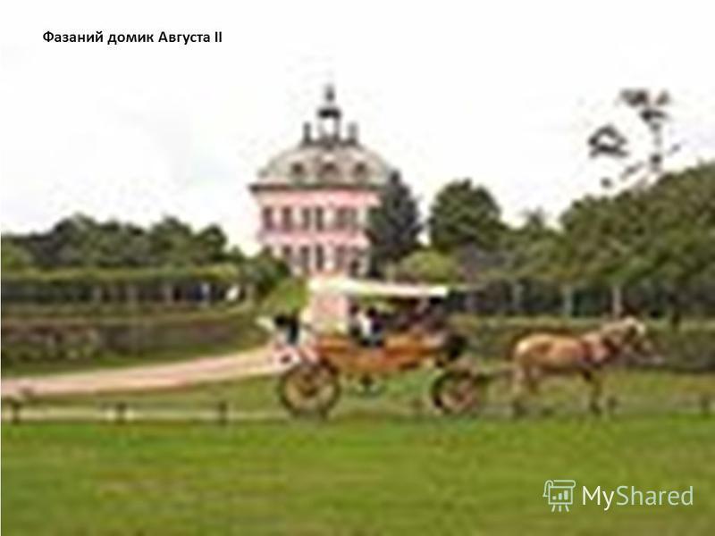 Фазаний домик Августа II