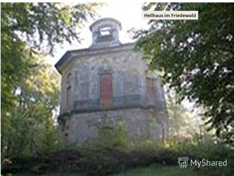Hellhaus im Friedewald