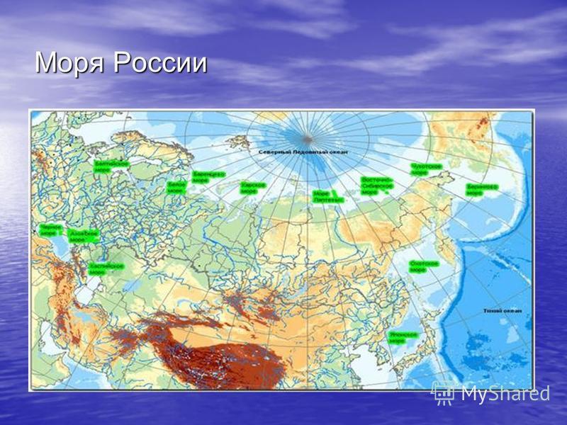 Моря России Урок географии в 8 классе ГБОУ Гимназия 1572 Москва 2013
