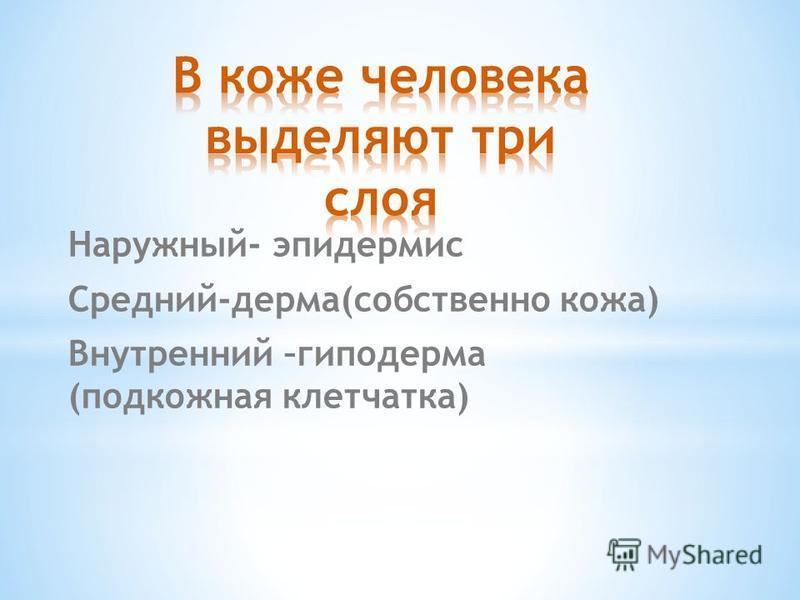 Наружный- эпидермис Средний-дерма(собственно кожа) Внутренний –гиподерма (подкожная клетчатка)