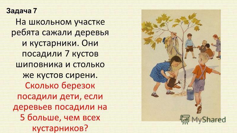 Задача 7 На школьном участке ребята сажали деревья и кустарники. Они посадили 7 кустов шиповника и столько же кустов сирени. Сколько березок посадили дети, если деревьев посадили на 5 больше, чем всех кустарников?