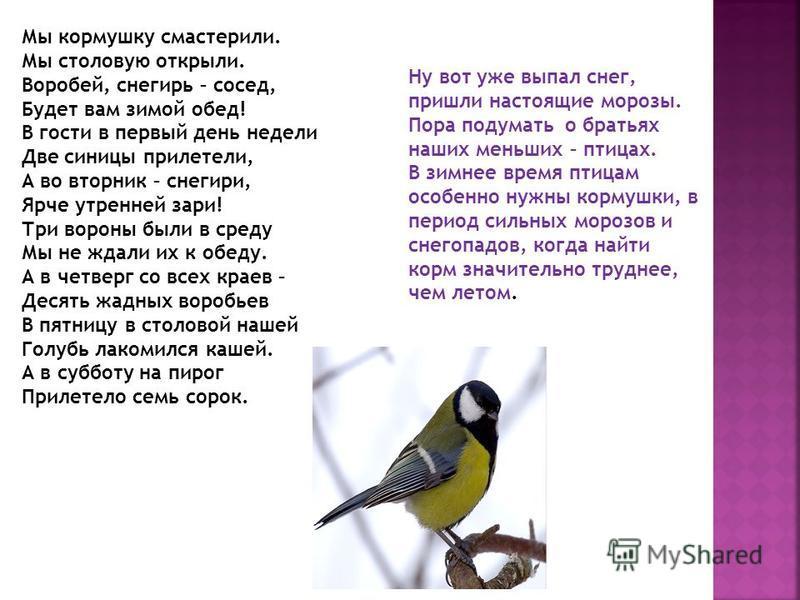 Выполнил Иван Окунев