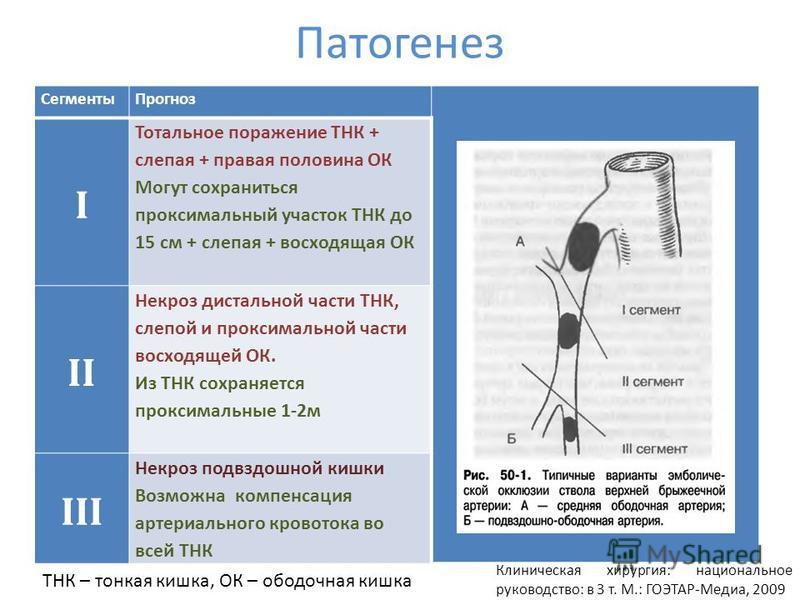 Патогенез Сегменты Прогноз I Тотальное поражение ТНК + слепая + правая половина ОК Могут сохраниться проксимальный участок ТНК до 15 см + слепая + восходящая ОК II Некроз дистальной части ТНК, слепой и проксимальной части восходящей ОК. Из ТНК сохран