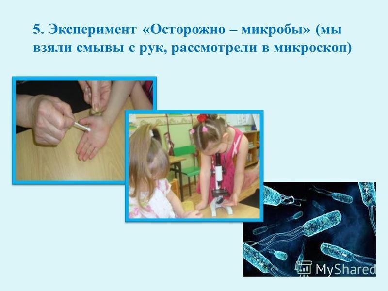 5. Эксперимент « Осторожно – микробы » ( мы взяли смывы с рук, рассмотрели в микроскоп )