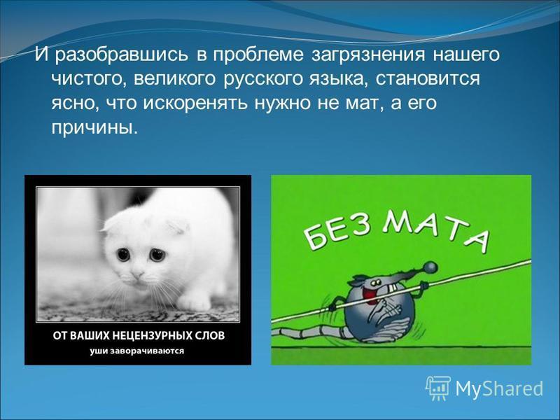 И разобравшись в проблеме загрязнения нашего чистого, великого русского языка, становится ясно, что искоренять нужно не мат, а его причины.