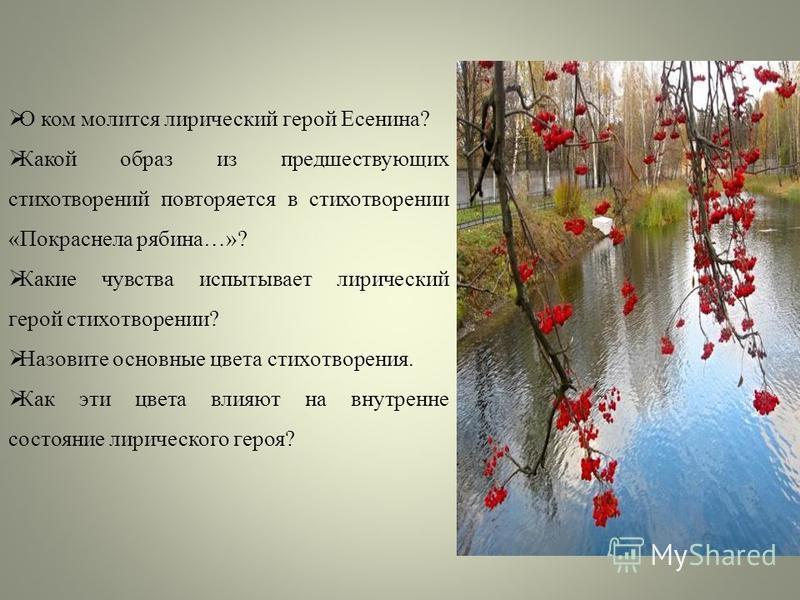 О ком молится лирический герой Есенина? Какой образ из предшествующих стихотворений повторяется в стихотворении «Покраснела рябина…»? Какие чувства испытывает лирический герой стихотворении? Назовите основные цвета стихотворения. Как эти цвета влияют