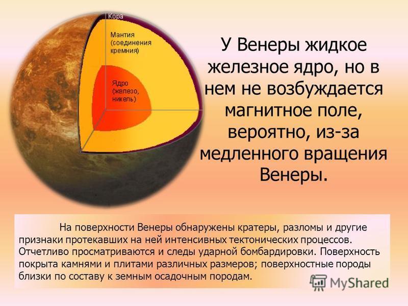У Венеры жидкое железное ядро, но в нем не возбуждается магнитное поле, вероятно, из-за медленного вращения Венеры. На поверхности Венеры обнаружены кратеры, разломы и другие признаки протекавших на ней интенсивных тектонических процессов. Отчетливо