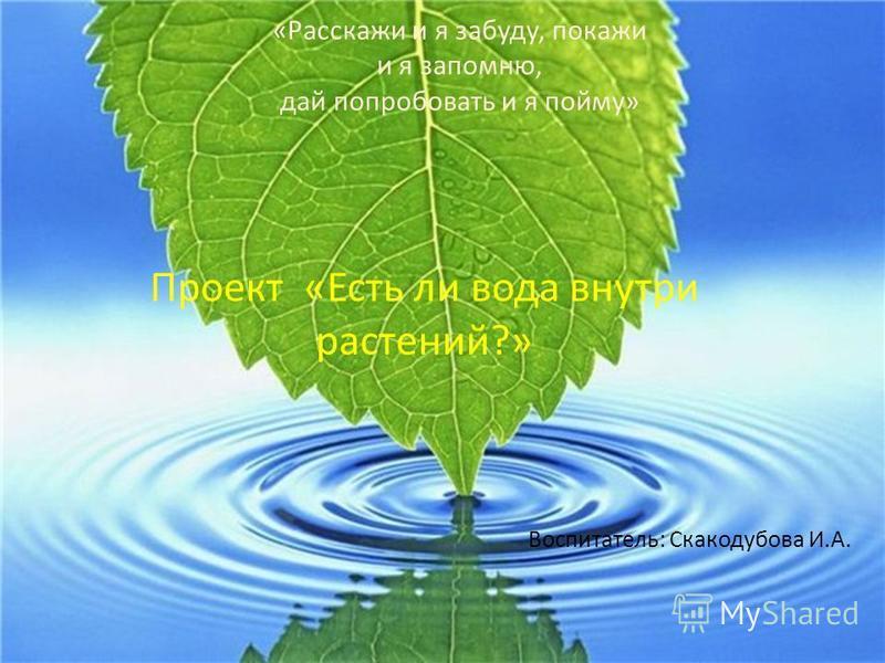 «Расскажи и я забуду, покажи и я запомню, дай попробовать и я пойму» Проект «Есть ли вода внутри растений?» Воспитатель: Скакодубова И.А.