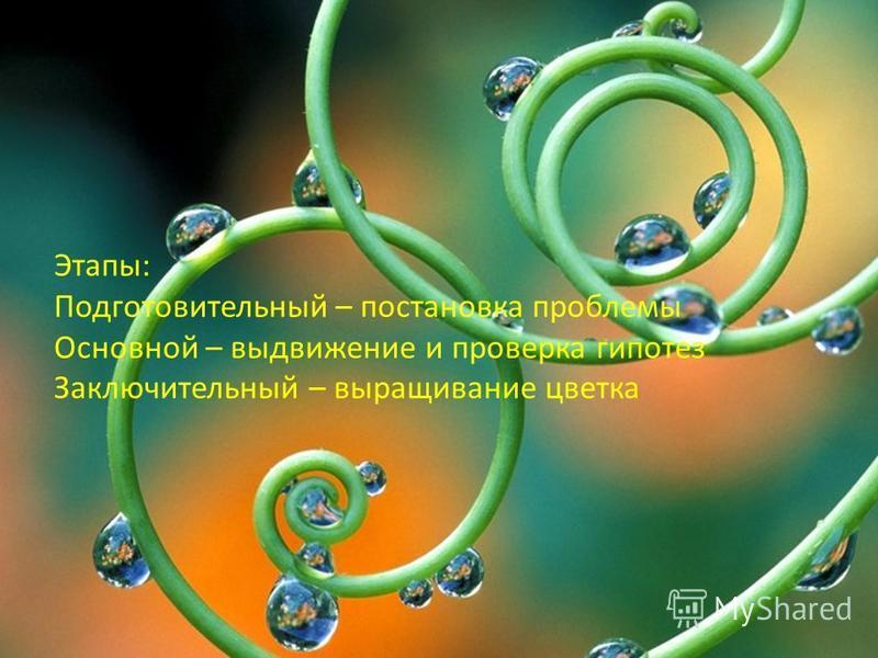 Этапы: Подготовительный – постановка проблемы Основной – выдвижение и проверка гипотез Заключительный – выращивание цветка