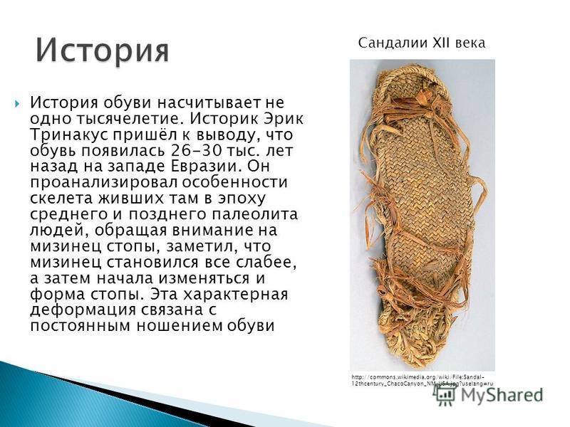 История обуви насчитывает не одно тысячелетие. Историк Эрик Тринакус пришёл к выводу, что обувь появилась 26-30 тыс. лет назад на западе Евразии. Он проанализировал особенности скелета живших там в эпоху среднего и позднего палеолита людей, обращая в