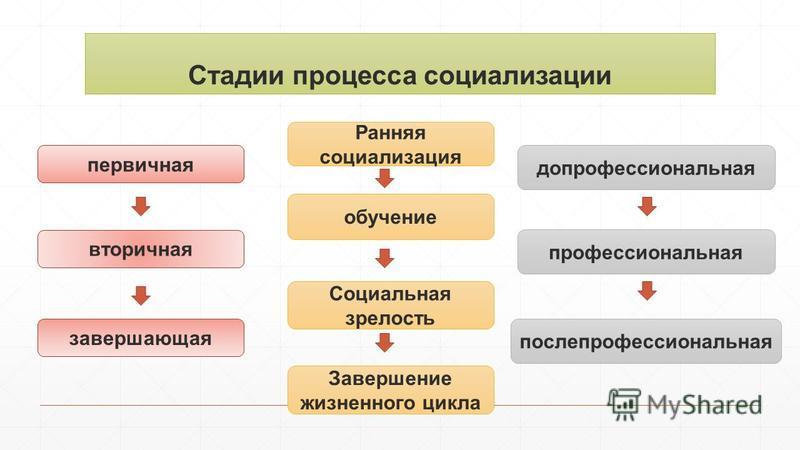 Стадии процесса социализации первичная вторичная завершающая допрофессиональная профессиональная после профессиональная Завершение жизненного цикла Социальная зрелость обучение Ранняя социализация