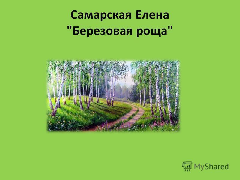 Самарская Елена Березовая роща