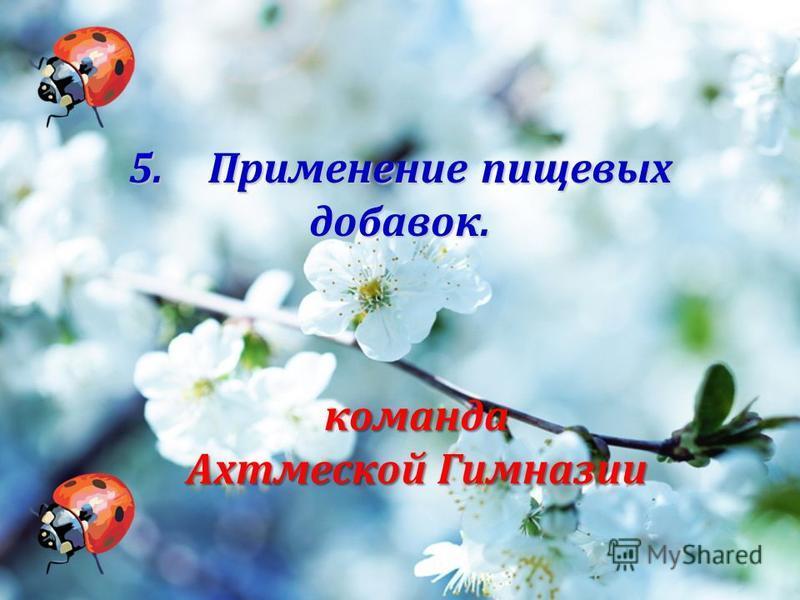 5. Применение пищевых добавок. команда Ахтмеской Гимназии