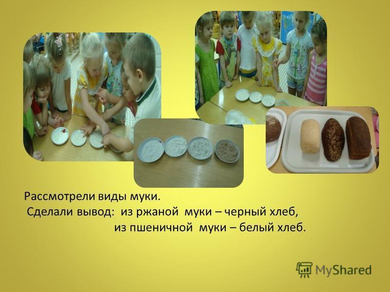 Рассмотрели виды муки. Сделали вывод: из ржаной муки – черный хлеб, из пшеничной муки – белый хлеб.