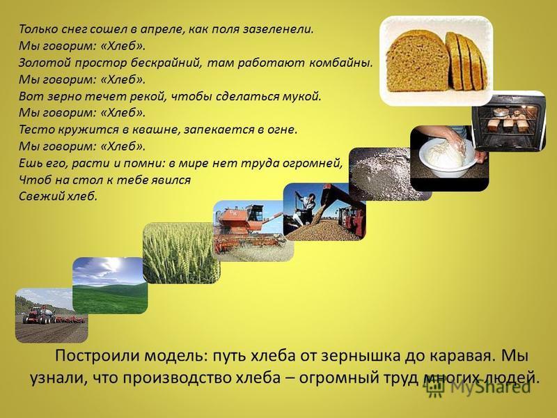 Построили модель: путь хлеба от зернышка до каравая. Мы узнали, что производство хлеба – огромный труд многих людей. Только снег сошел в апреле, как поля зазеленели. Мы говорим: «Хлеб». Золотой простор бескрайний, там работают комбайны. Мы говорим: «