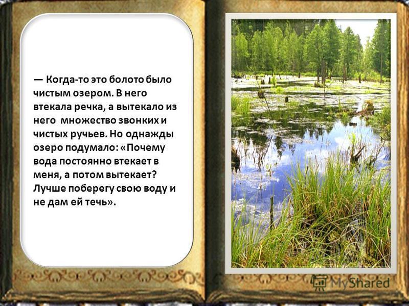 Когда-то это болото было чистым озером. В него втекала речка, а вытекало из него множество звонких и чистых ручьев. Но однажды озеро подумало: «Почему вода постоянно втекает в меня, а потом вытекает? Лучше поберегу свою воду и не дам ей течь».