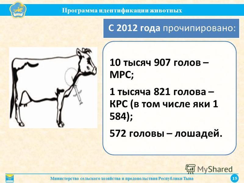 Программа идентификации животных Министерство сельского хозяйства и продовольствия Республики Тыва 15 10 тысяч 907 голов – МРС; 1 тысяча 821 голова – КРС (в том числе яки 1 584); 572 головы – лошадей. С 2012 года прочипировано: