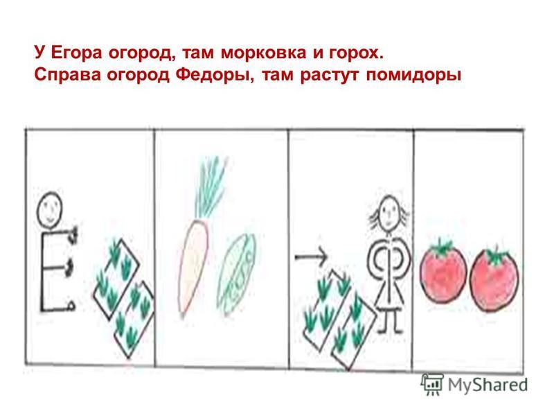 У Егора огород, там морковка и горох. Справа огород Федоры, там растут помидоры