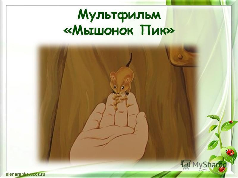 Мультфильм «Мышонок Пик»