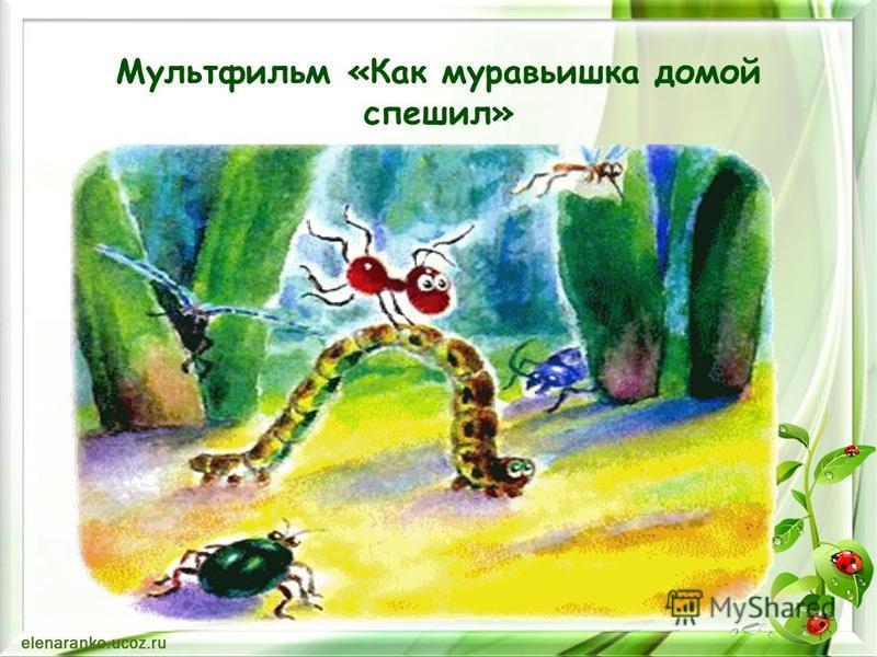 Мультфильм «Как муравьишка домой спешил»