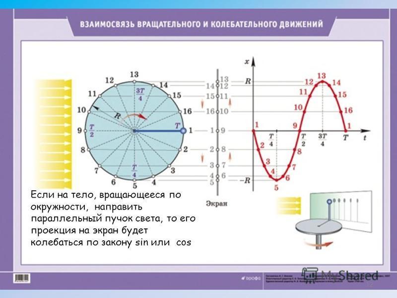 12 Если на тело, вращающееся по окружности, направить параллельный пучок света, то его проекция на экран будет колебаться по закону sin или cos