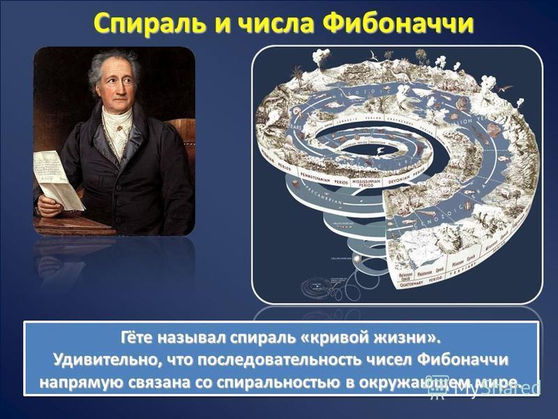Спираль и числа Фибоначчи Гёте называл спираль «кривой жизни». Удивительно, что последовательность чисел Фибоначчи напрямую связана со спиральностью в окружающем мире. Гёте называл спираль «кривой жизни». Удивительно, что последовательность чисел Фиб