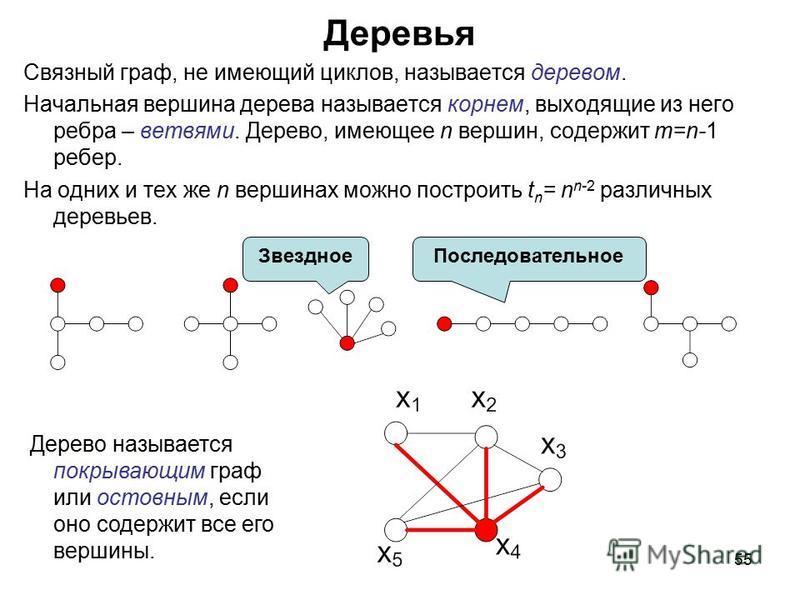 55 Деревья Связный граф, не имеющий циклов, называется деревом. Начальная вершина дерева называется корнем, выходящие из него ребра – ветвями. Дерево, имеющее n вершин, содержит m=n-1 ребер. На одних и тех же n вершинах можно построить t n = n n-2 ра