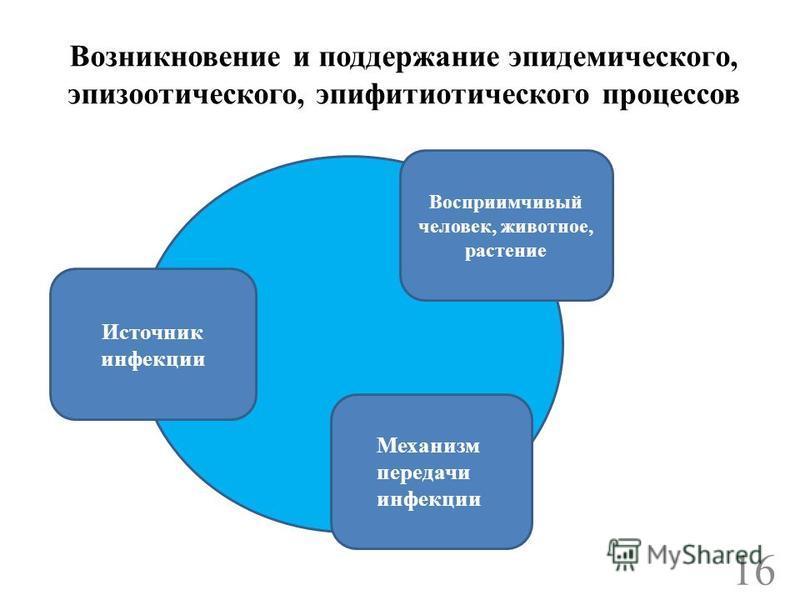 Возникновение и поддержание эпидемического, эпизоотического, эпифитиотического процессов Источник инфекции Восприимчивый человек, животное, растение Механизм передачи инфекции 16
