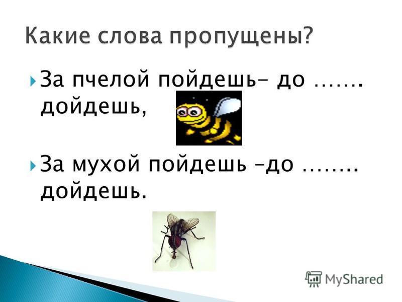 За пчелой пойдешь- до ……. дойдешь, За мухой пойдешь –до …….. дойдешь.