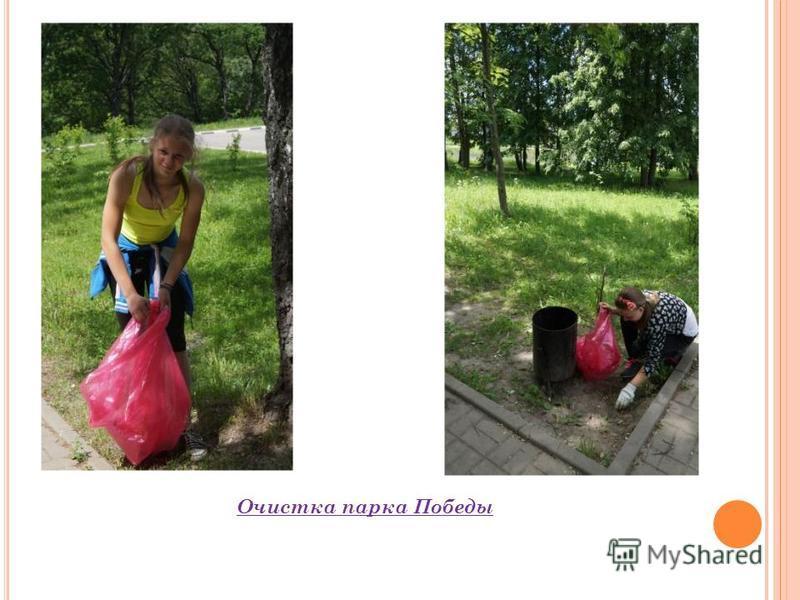 Очистка парка Победы