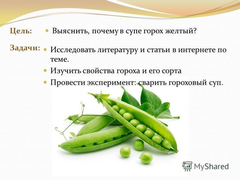 Цель: Задачи: Выяснить, почему в супе горох желтый? Исследовать литературу и статьи в интернете по теме. Изучить свойства гороха и его сорта Провести эксперимент: сварить гороховый суп.