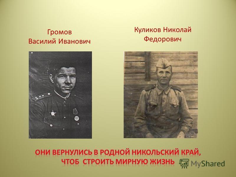 Громов Василий Иванович Куликов Николай Федорович
