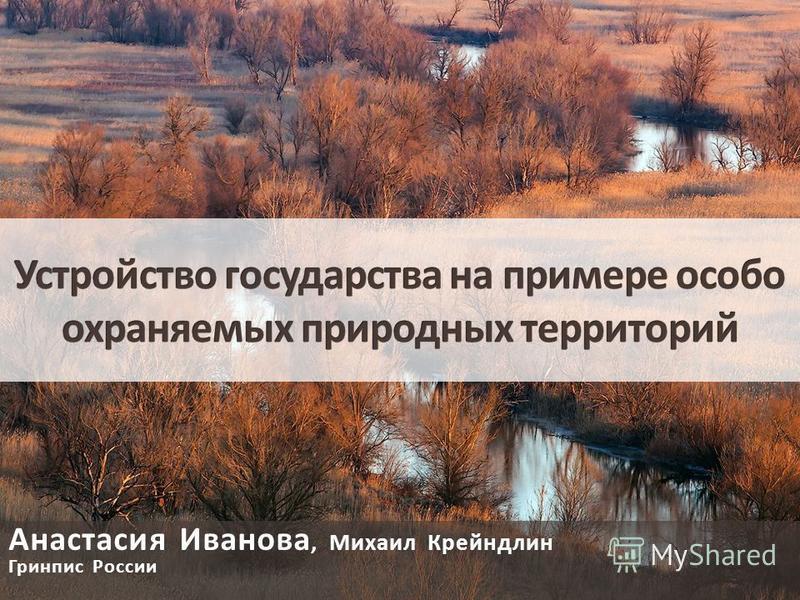 Анастасия Иванова, Михаил Крейндлин Гринпис России