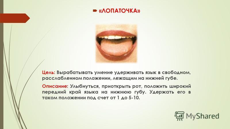 «ЛОПАТОЧКА» Цель: Вырабатывать умение удерживать язык в свободном, расслабленном положении, лежащим на нижней губе. Описание: Улыбнуться, приоткрыть рот, положить широкий передний край языка на нижнюю губу. Удержать его в таком положении под счет от